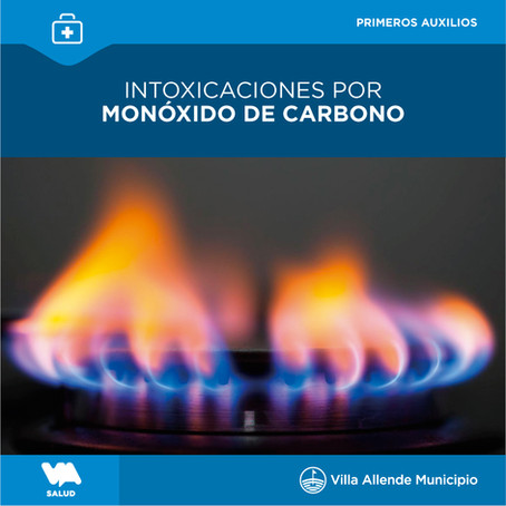 Todas las intoxicaciones por monóxido de carbono son evitables