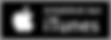 iTunes-logo-300x108.png