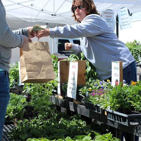 Vendors at The Idaho Falls Farmers Market   Buy Idaho Local