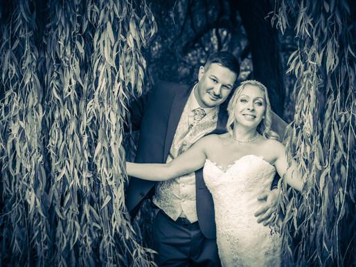 Wedding under the Willow