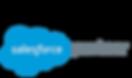 salesforce_partnerlogo.png