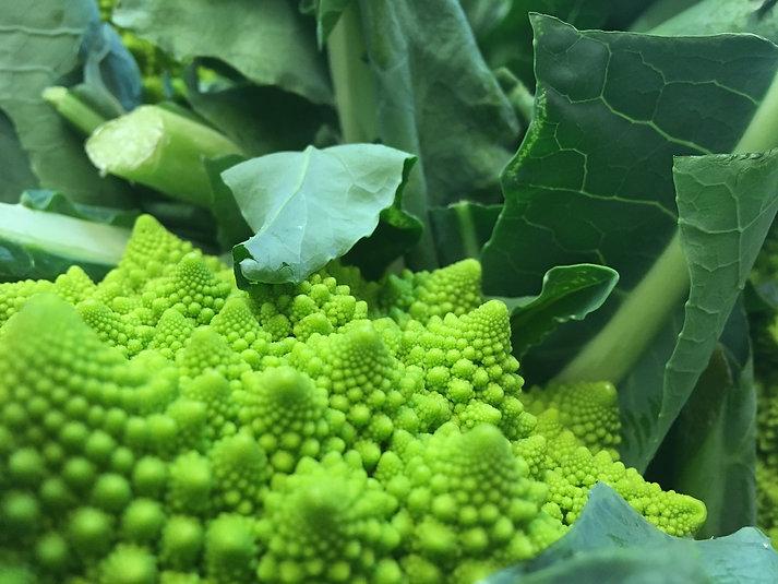 Romanesque Cauliflower.JPG