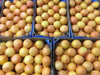 Grapefruit-500-x-375.jpg