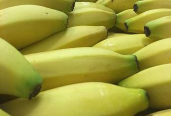 banana-500-x-339.jpg