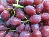 Red-Grape-500-x-375.jpg
