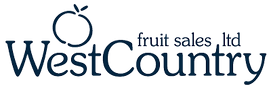 FS-Logo-BlueTransparent.png-400-x-133.pn