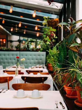 Restaurant-500-x-667.jpg