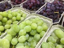 Grapes-500-x-375.jpg