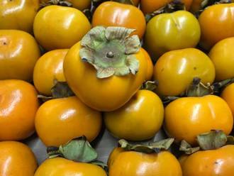 Sharon-Fruit-500-x-375.jpg