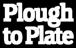 P2P-Logo-White-Transparent-398-x-252.png