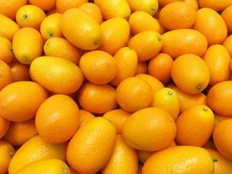 Kumquat-500-x 375.jpg