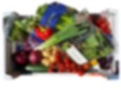 Salad Box Bundle