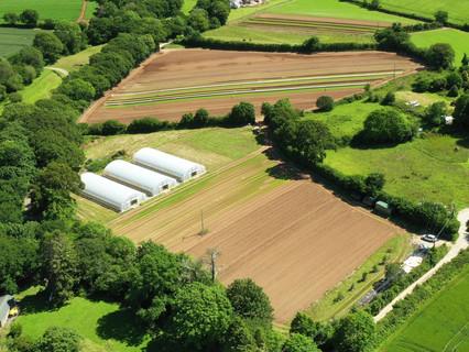 Canara Farm
