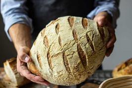 Loaves-500-x-333.jpg