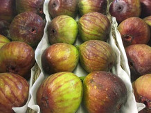Figs-500-x-375.jpg