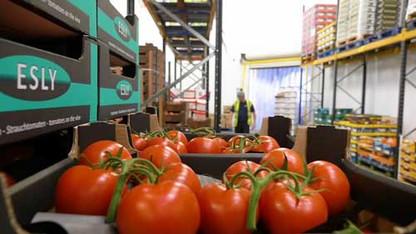 Warehouse-Shot.jpg-500-x-281.jpg
