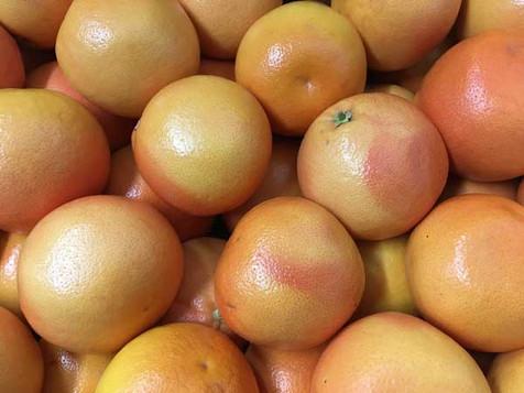 Grapefruit-600-x-450.jpg