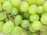 Green-Grape-500-x-375.jpg