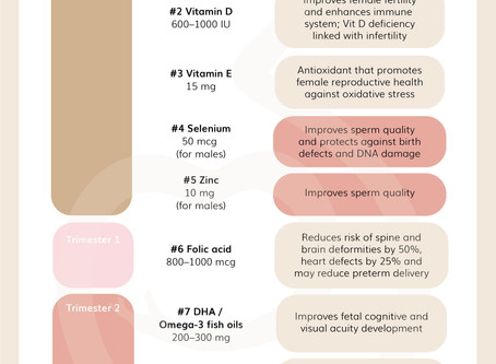 TOP 9 Important Nutrients for Fertility and Pregnancy