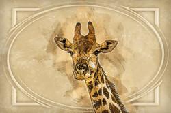 Giraffe-Retro.jpg