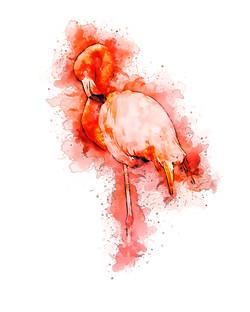 Flamingo-GlassyWatercolor