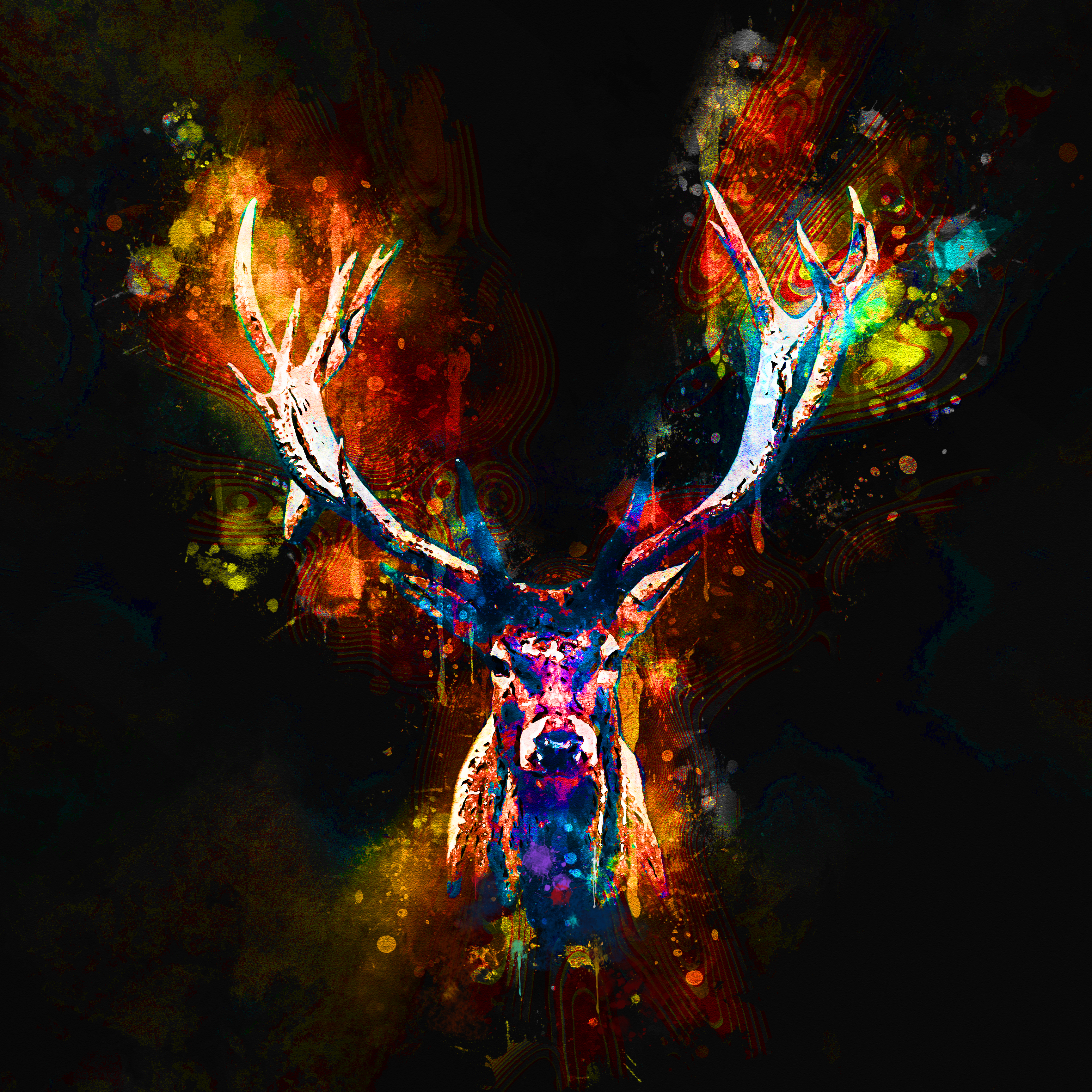 Buck-WatercolorSplatter