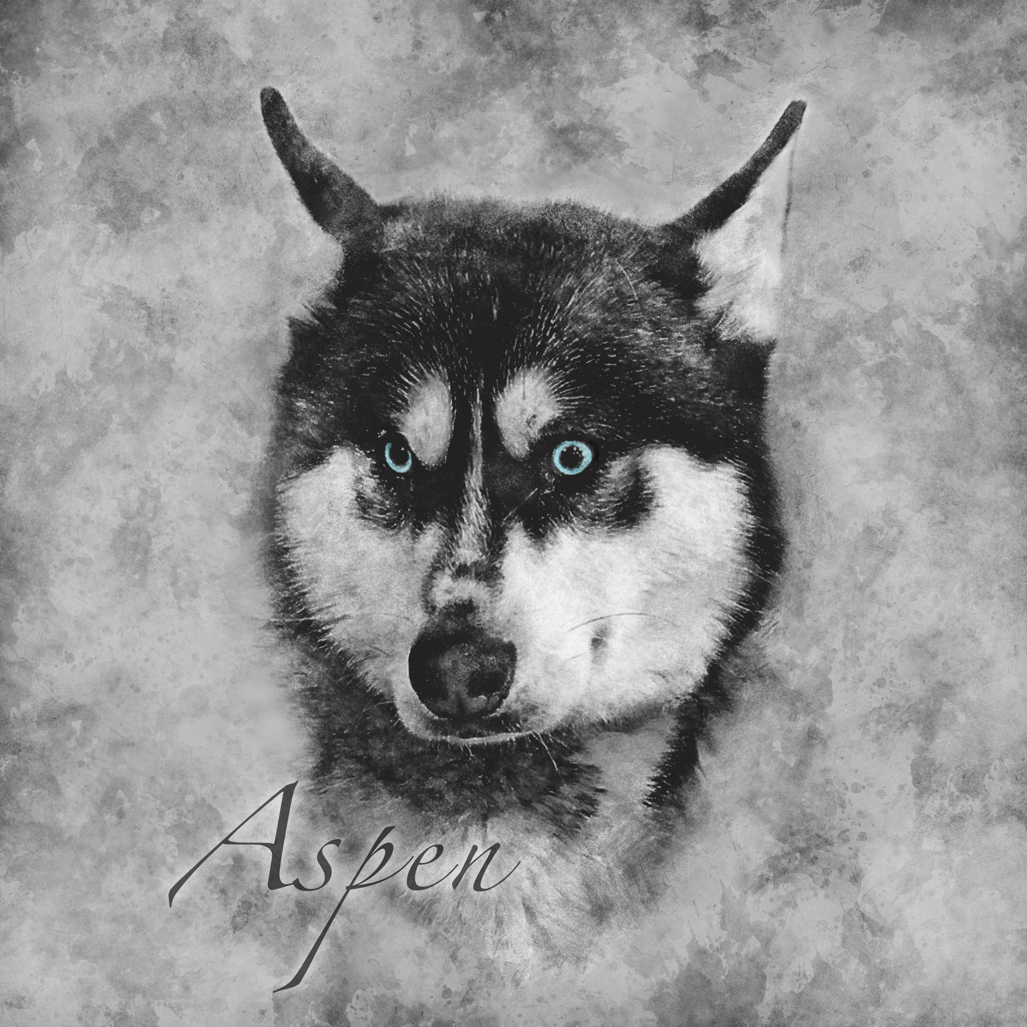 Aspen - Vintage