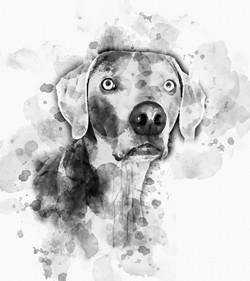 Rhett-Ink.jpg