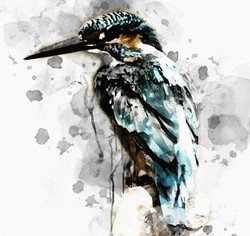 bird-Ink.jpg