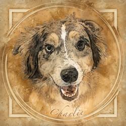 Charlie-Retro