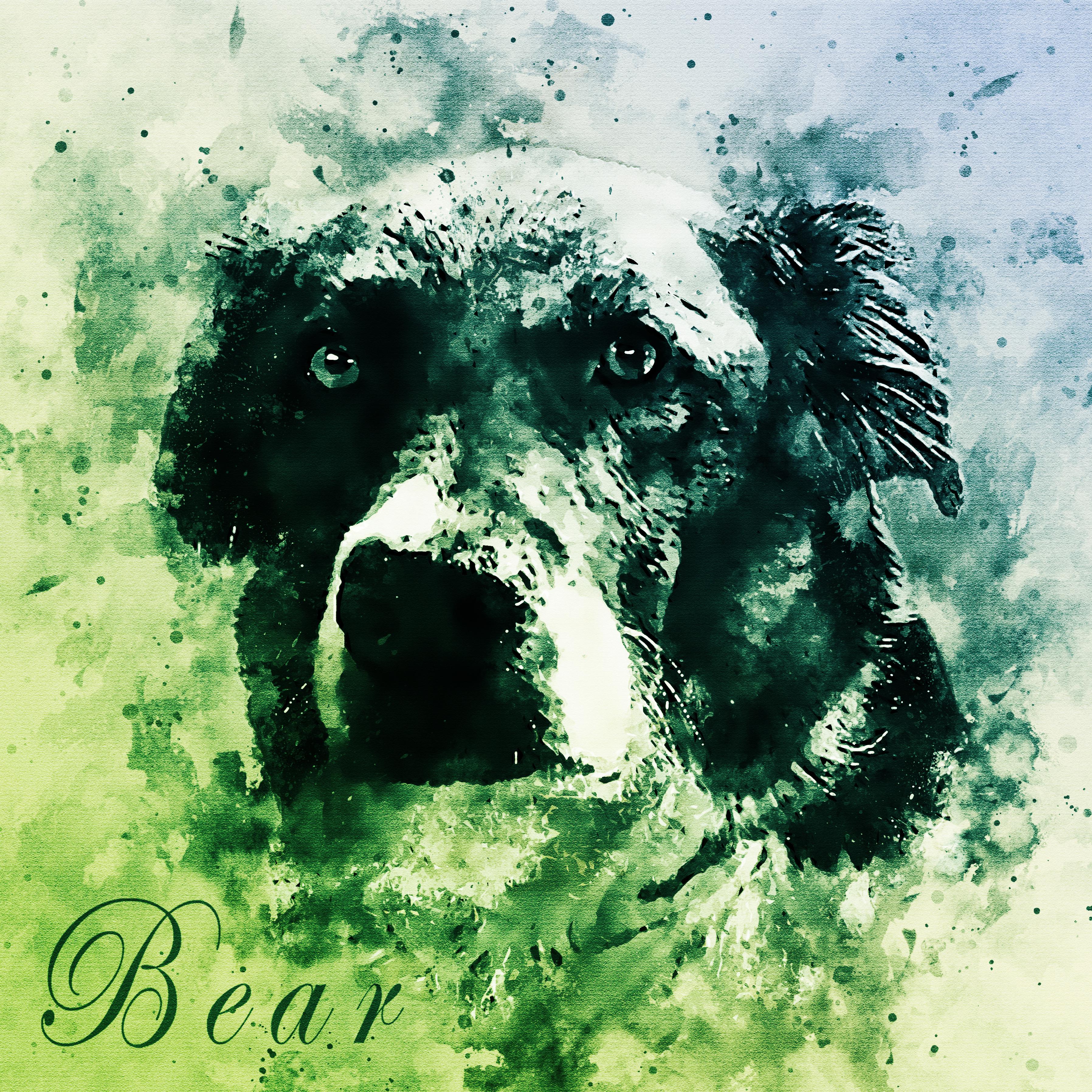 Bear-VintageWatercolorSplatterCombo