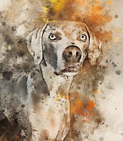 Rhett-Watercolor.jpg
