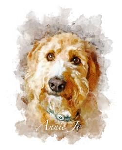 Annie Jo