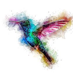 Hummingbird - GlassyWatercolor