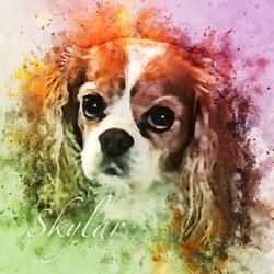 Skylar-WatercolorSplatter