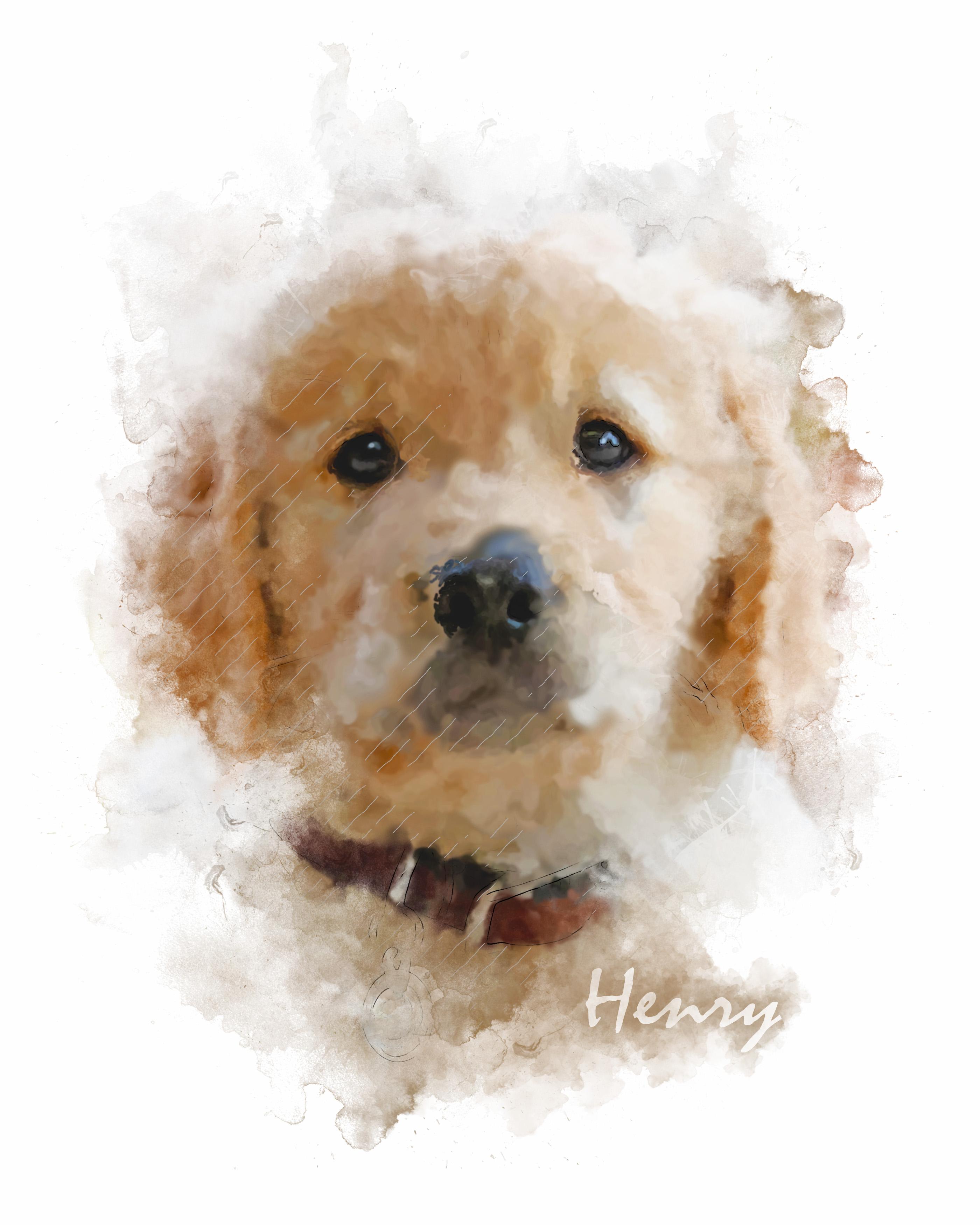 Henry-MixedMedia