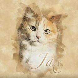 JAX-Retro