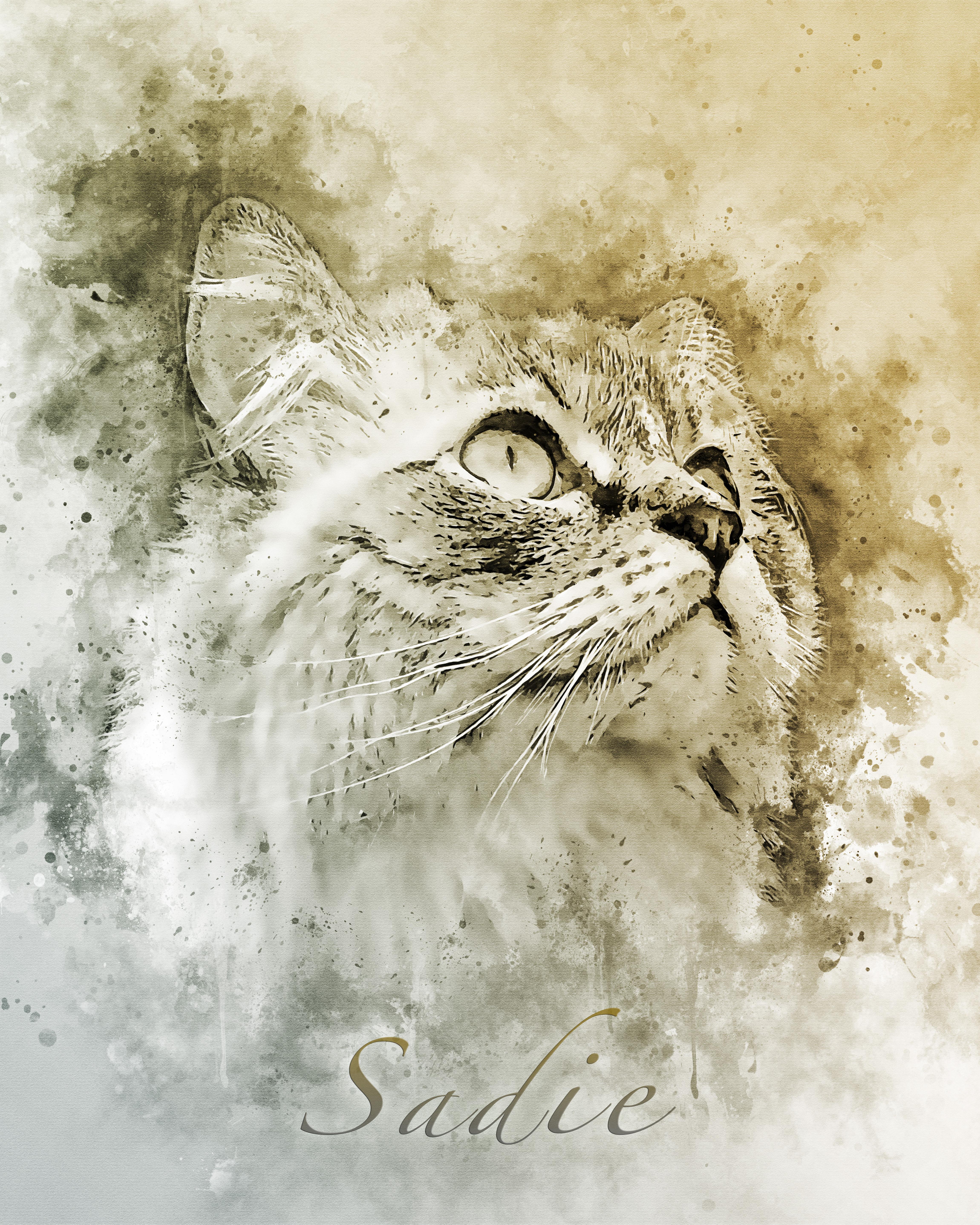 Sadie - WatercolorSplatter