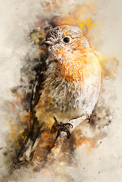 ScarletRobin-WatercolorSplatter