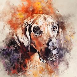 Sassy-Watercolor.jpg