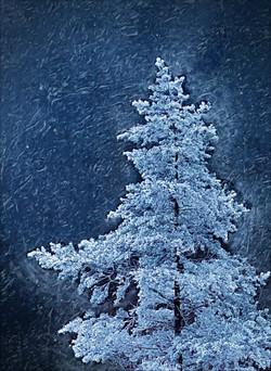 Snowpine-DigiPaint