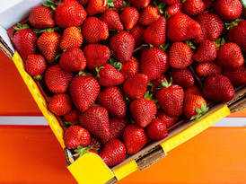 RODMAC comercializadora de frutas y verduras