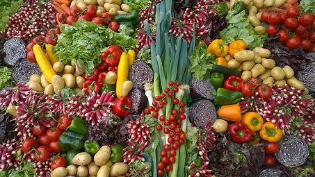 comercializadora frutas y verduras