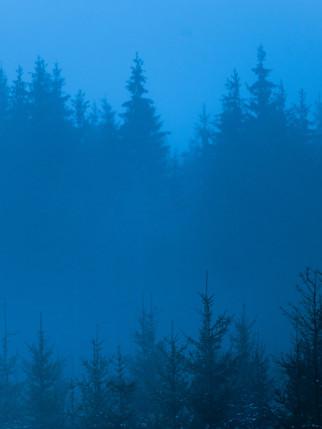 Blue Hour VII