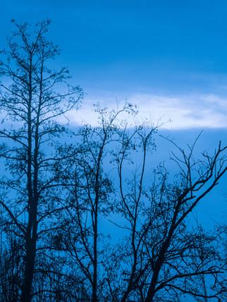 Blue Hour VI