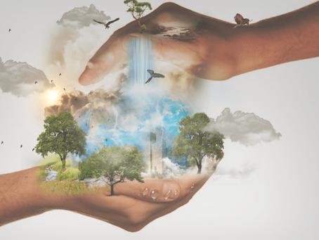 Kristiina Raie: Kuidas muuta oma unistused reaalsuseks