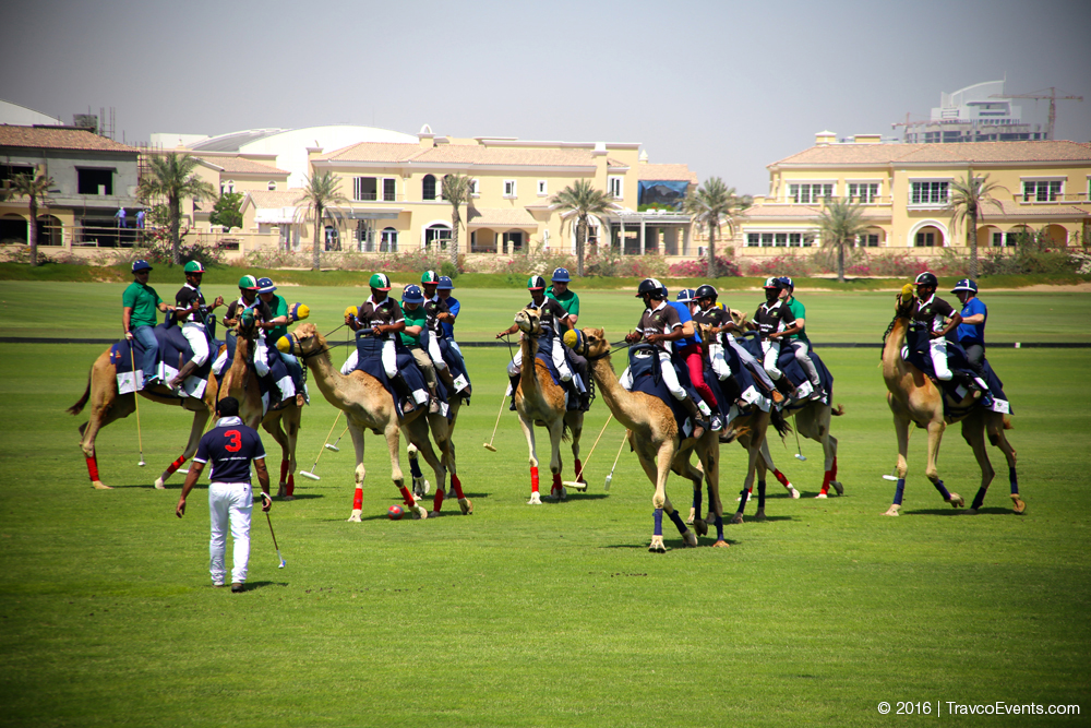 Camel Polo_TravcoEvents