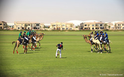 Camel Polo Sport_TravcoEvents