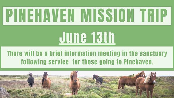 Pinehaven Meeting-2.png