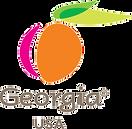 Georgia_Logo.png